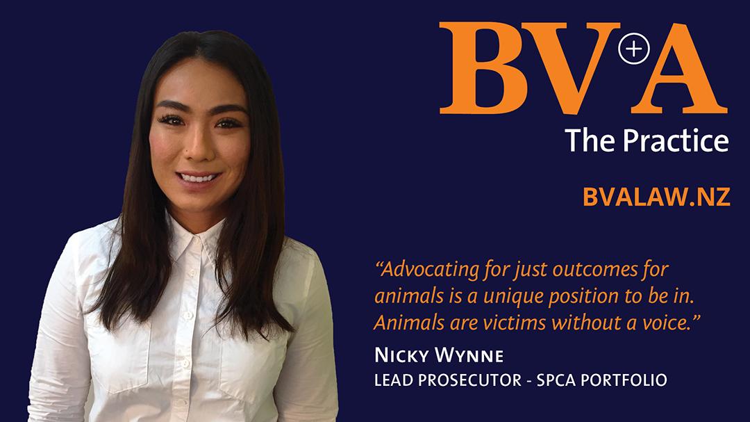 BVA, the SPCA and Animal Welfare prosecution